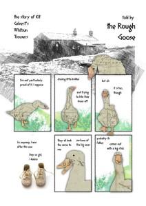 goose_001